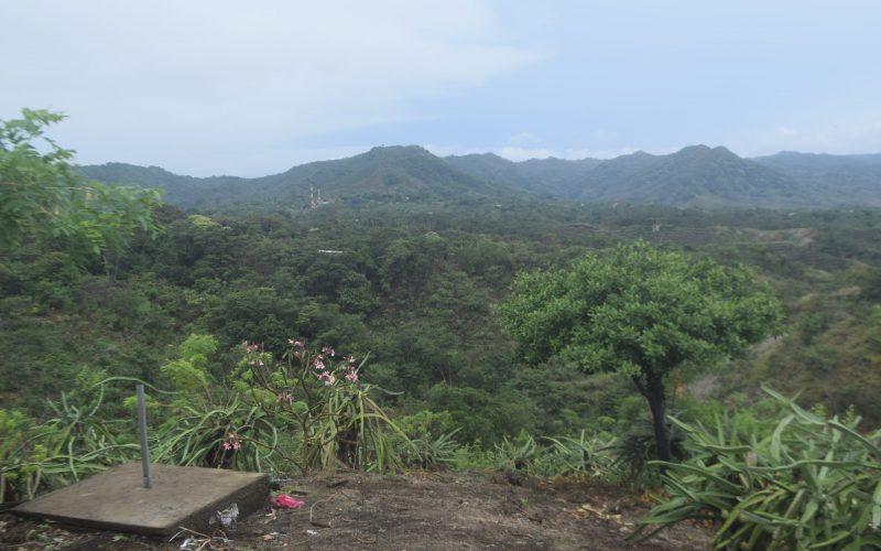 Panama Community
